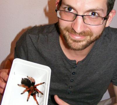 spider-scorpion