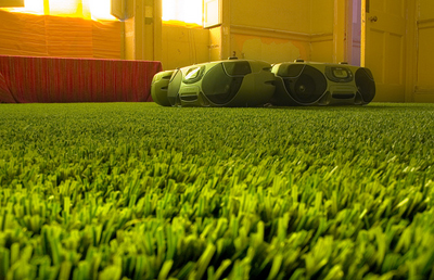 Image of astro turf