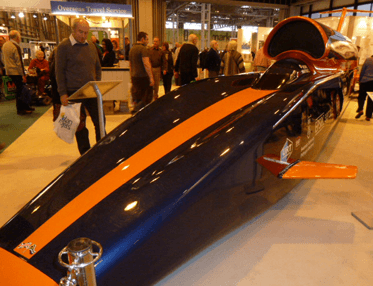 Image of Bloodhound replica