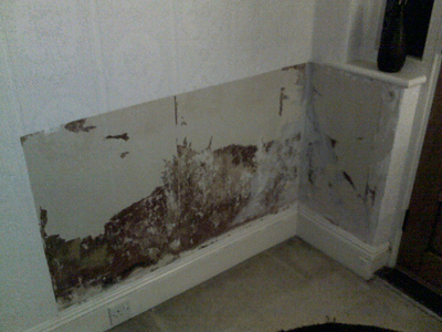 Image of damp walls