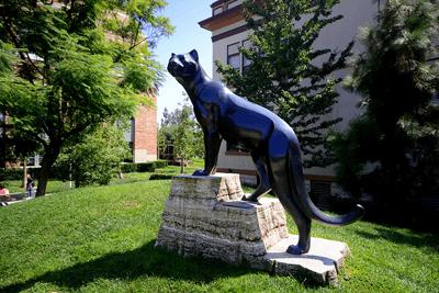 Bronze_panther