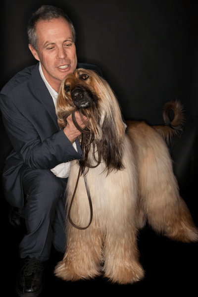 Afghan hound with owner