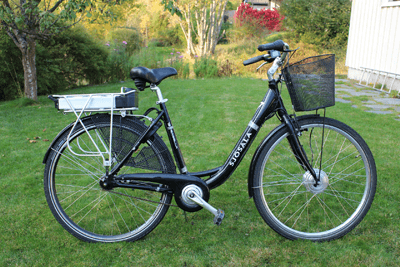 Image of an electric bike in a garden