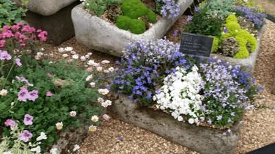Image of rockery gardens