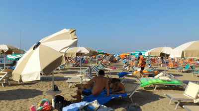 Image of people reclining on sunloungers on the beach.