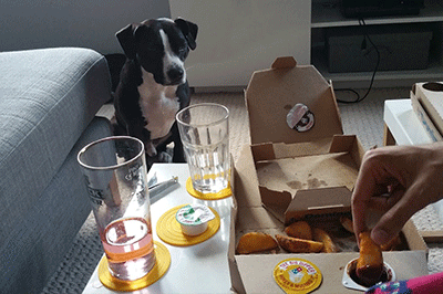 Image of a dog eyeing up some chicken nuggets