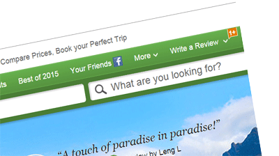 Image of trip advisor leave a review section