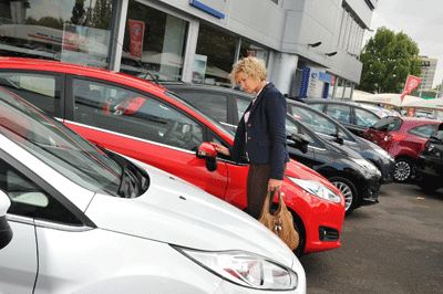 Image of a customer looking at a car