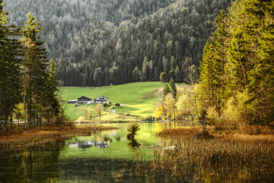 Image of the Bavarian forest