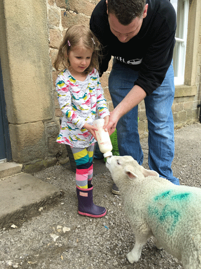 Image of father and daughter feeding a sheep