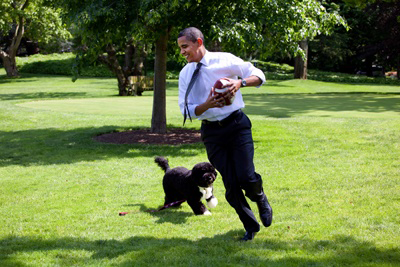 Image of Obama with Bo