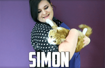 Simon is a fluffy ginger cat that lives in the Feline Good Cafe in Meridian Court, North Road, Cardiff CF14 3BE
