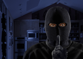 Image of thief in house