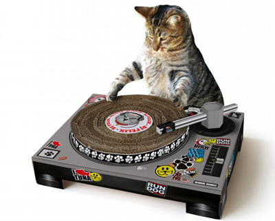 Cat with turntable