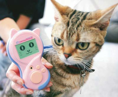 Cat with translation device