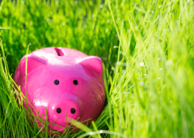A picture of a pink piggy bank in grass