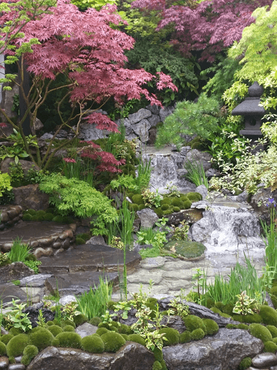 Image of a small artisan garden with waterfall