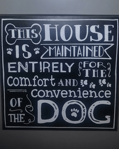 A dog-related sign