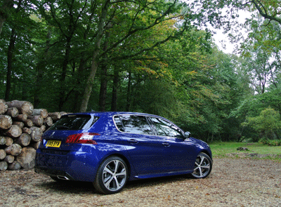Imge of Peugeot 308 in New Forest