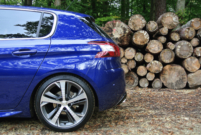 Image of Peugeot 308 in the New Forest