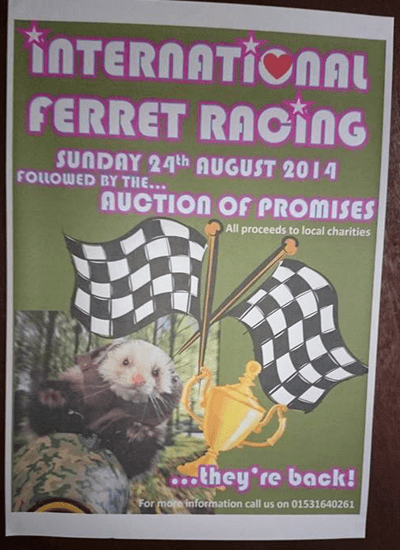A poster advertising ferret racing