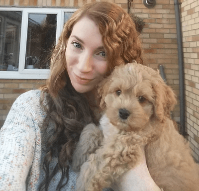 Image of Rory the cockapoo with Abbie Laughton-Coles