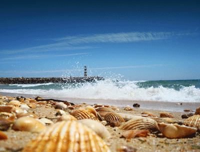 Image of beach at Faro