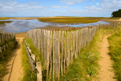 Image of Holkham Nature Reserve