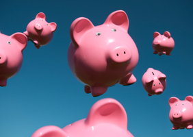 pigs-sky-savings