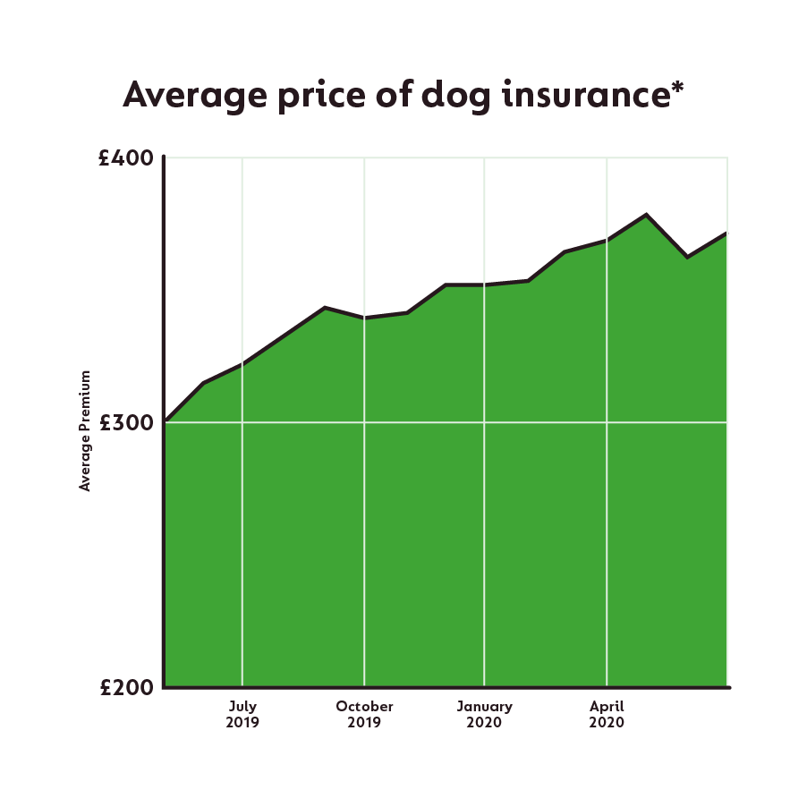 The average price of dog insurance hit a record high in May 2020 of £378 annually. This is 26% higher than the price the year before.
