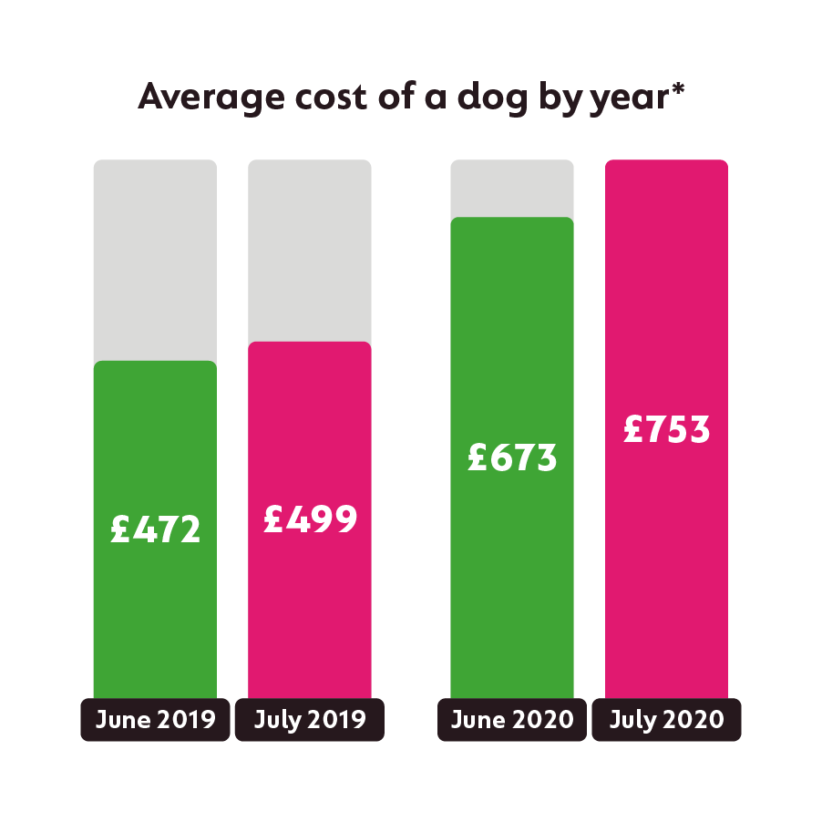 average price of a new dog increased by 50% compared to last year's prices during coronavirus pandemic